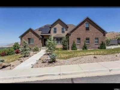 Santaquin Single Family Home For Sale: 1035 E 300 S