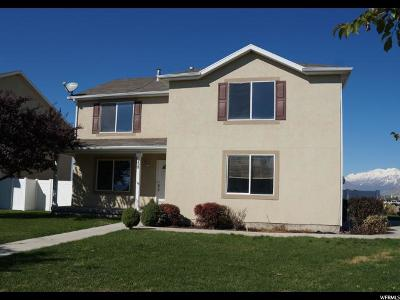 Springville Single Family Home For Sale: 958 W 1325 S