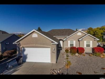 Payson Single Family Home For Sale: 1027 S Green Ridge Ave