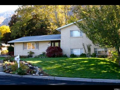 Provo Single Family Home For Sale: 3202 Cherokee Ln