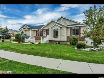 Draper Single Family Home For Sale: 13173 S Green Clover Rd W