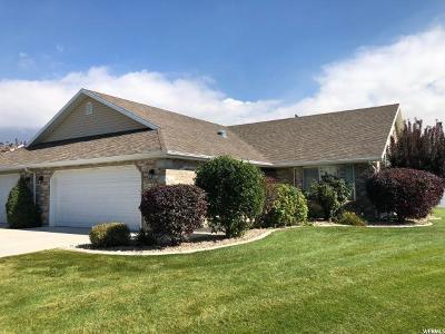 American Fork Single Family Home For Sale: 531 S 1040 E