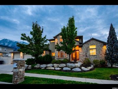 Sandy Single Family Home For Sale: 2382 E Jessica Ln S