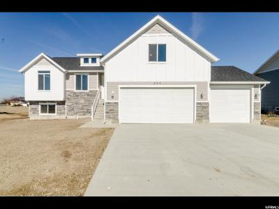Hyrum Single Family Home For Sale: 624 W 225 N #214