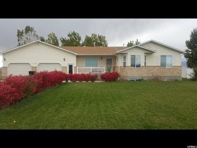 Preston Single Family Home For Sale: 1103 N 800 W