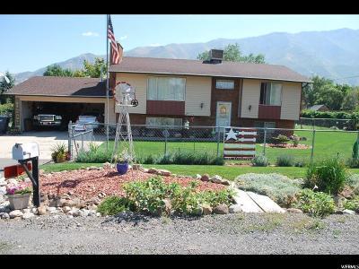 Santaquin Single Family Home For Sale: 121 S 100 E