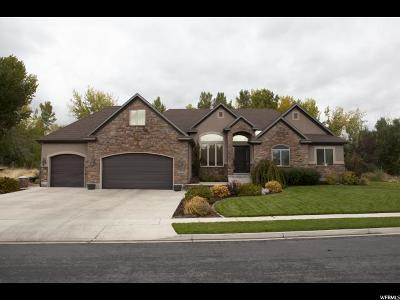 Spanish Fork Single Family Home For Sale: 1132 W River Ridge Ln