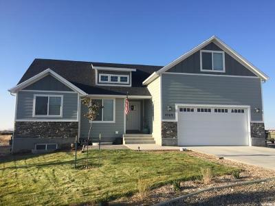 Erda Single Family Home For Sale: 4369 Rose Spgs