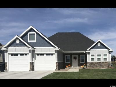Tremonton Single Family Home For Sale: 2590 W 600 N