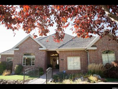 Alpine Single Family Home For Sale: 888 S Healey Ct