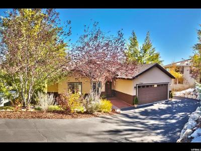 Park City Single Family Home For Sale: 7786 Susans Cir