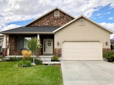 Cedar Hills Single Family Home For Sale: 4012 W Valderrama St