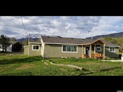 Tooele County Single Family Home For Sale: 319 Center St