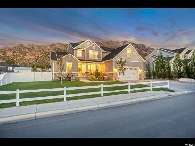Santaquin Single Family Home For Sale: 485 S 400 E