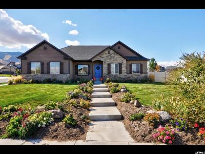 Saratoga Springs Single Family Home For Sale: 2757 S Day Lilly Dr W