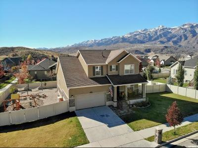Mountain Green Single Family Home For Sale: 4675 W Ranch Blvd
