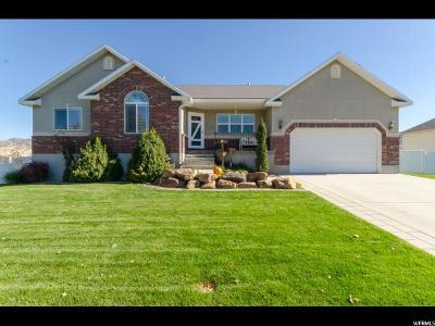 Nibley Single Family Home For Sale: 2338 Spring Hollow Cir