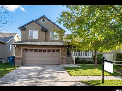 Lehi Single Family Home For Sale: 1255 W 3060 N