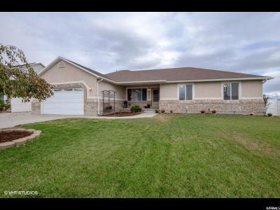 South Jordan Single Family Home For Sale: 3508 W Lily Garden Ln