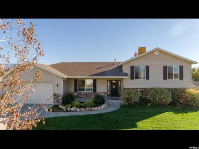 Nibley Single Family Home For Sale: 924 W Nibley Park Ave S