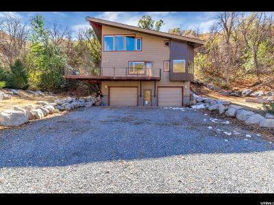Salt Lake City Single Family Home For Sale: 5980 E Red Hill Ln S
