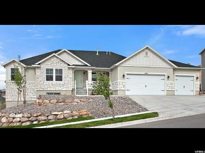Lehi Single Family Home For Sale: 4203 N 900 W