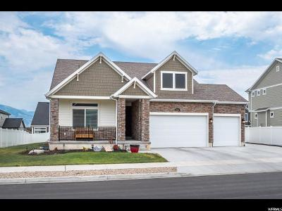 South Jordan Single Family Home For Sale: 10941 Raphi Pl
