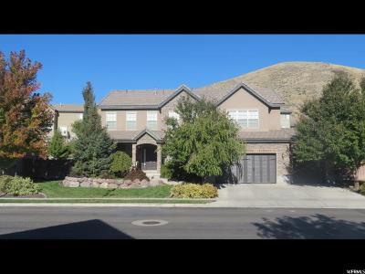 Lehi Single Family Home For Sale: 1998 W Whisper Wood Dr