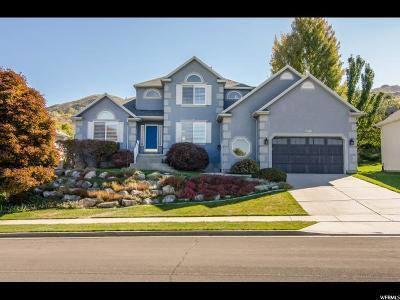 Draper Single Family Home For Sale: 1100 E Skyler S