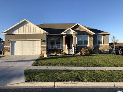 Saratoga Springs Single Family Home For Sale: 876 W Mountain Peak Dr