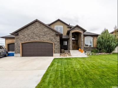 Saratoga Springs Single Family Home For Sale: 93 E Turnbuckle Rd S
