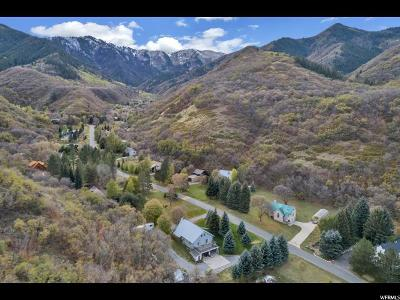 Spanish Fork Single Family Home For Sale: 10687 S Covered Bridge Cyn