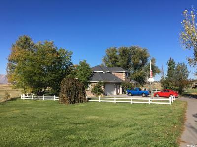 Spanish Fork Single Family Home For Sale: 926 Arrowhead Trl