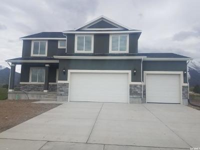 Mapleton Single Family Home For Sale: 219 S Doubleday St #51