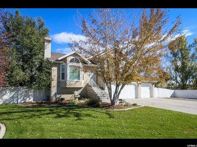 Riverton Single Family Home For Sale: 13135 S 2980 W