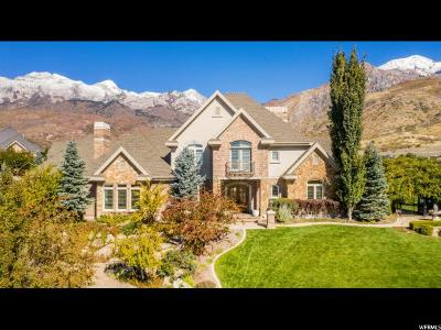 Alpine Single Family Home For Sale: 917 E Quail Hollow Cir N