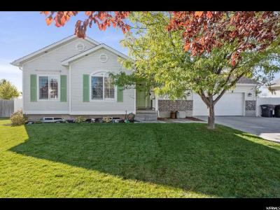 Stansbury Park Single Family Home For Sale: 72 W Pebble Beach Dr N