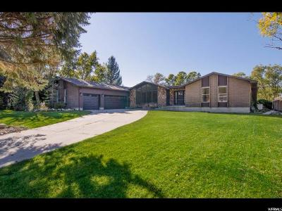 Sandy Single Family Home For Sale: 8378 S Etienne Way