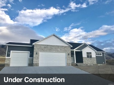 Hyde Park UT Single Family Home For Sale: $455,000