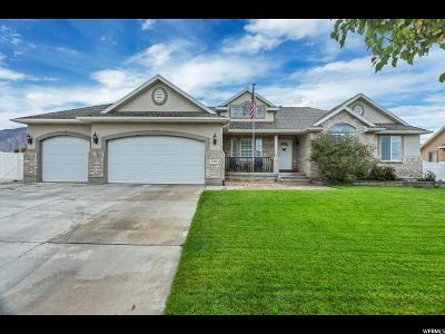 Stansbury Park Single Family Home For Sale: 5476 N Cricket Ln