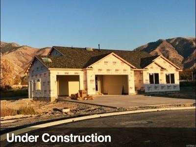 North Logan Single Family Home For Sale: 656 E 2660 N