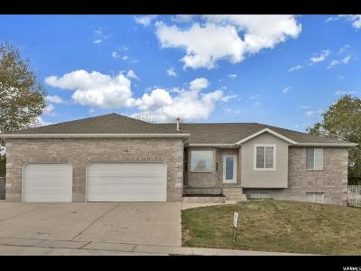 South Jordan Single Family Home For Sale: 9936 S Birdie Way W