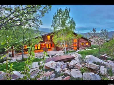 Single Family Home For Sale: 4265 Hidden Cove Rd