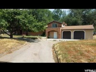 Lindon Single Family Home For Sale: 330 Canal Dr