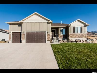 Smithfield Single Family Home For Sale: 414 S 1100 E