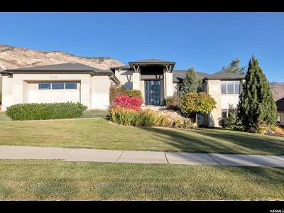 Weber County Single Family Home For Sale: 3578 N 875 E