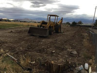 Tooele County Residential Lots & Land For Sale: 460 S Coleman W