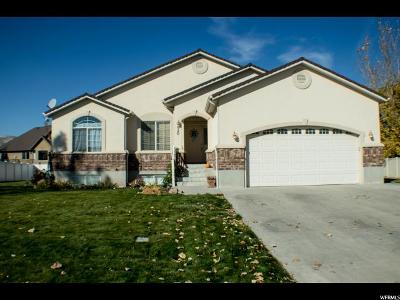 Tremonton Single Family Home For Sale: 920 W 720 N