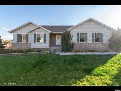 Eagle Mountain Single Family Home For Sale: 2322 E Hawk Ln