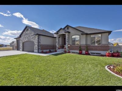 Erda Single Family Home For Sale: 4569 N England Estates Rd W